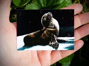Detail Image for art Seal Pup  (SOLD)