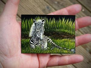 Detail Image for art Zebra Foal  (SOLD)