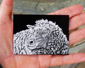 Detail Image for art Baa Ram Ewe  (SOLD)