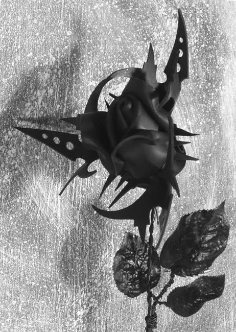 Art: Biohazard Rose by Artist Barbara Doherty (MidnightZodiac Leather)