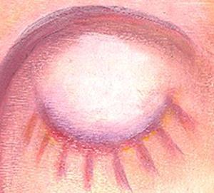 Detail Image for art Enlightened