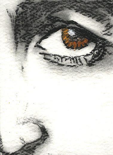 Art: Paul McCartney by Artist Victor McGhee