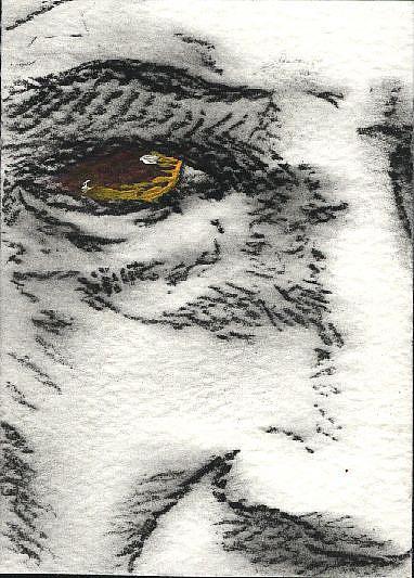 Art: Da Vinci Self Portrait by Artist Victor McGhee