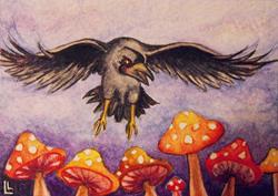 Art: Stark Raven Mushrooms ACEO by Artist Lindi Levison