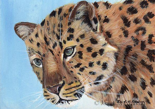 Art: Leopard ACEO by Artist Janet M Graham