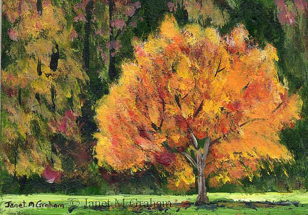 Art: Autumn Tree ACEO by Artist Janet M Graham