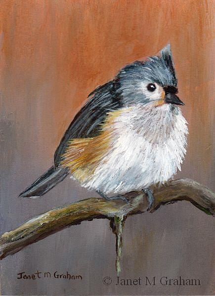 Art: Tufted Titmouse ACEO by Artist Janet M Graham
