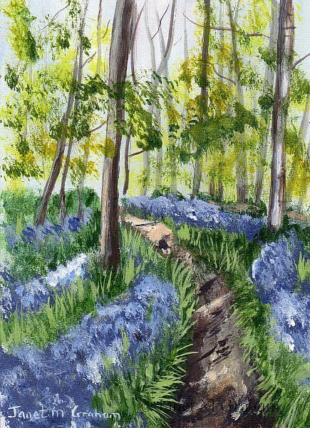 Art: Bluebell Forest ACEO by Artist Janet M Graham