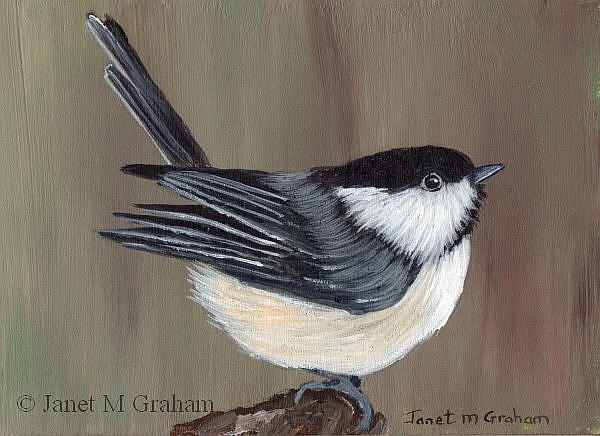 Art: Willow Tit ACEO by Artist Janet M Graham