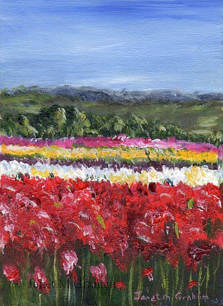 Art: Tulip Fields ACEO by Artist Janet M Graham