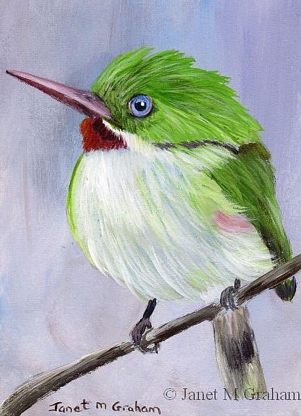 Art: Jamaican Tody ACEO by Artist Janet M Graham