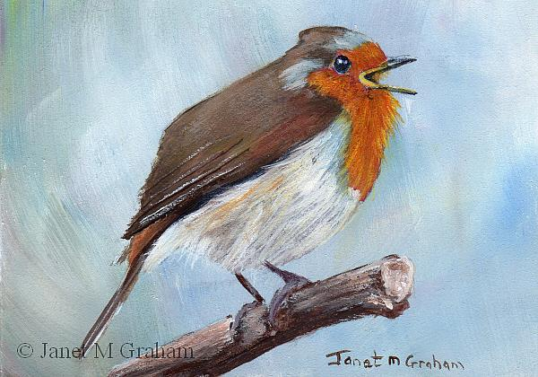 Art: Robin ACEO by Artist Janet M Graham