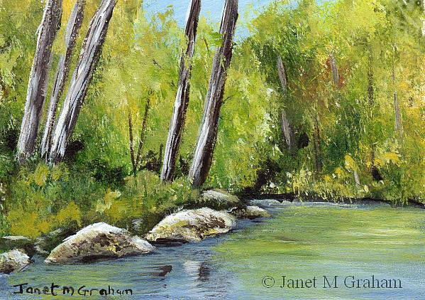 Art: River through the Forest ACEO by Artist Janet M Graham