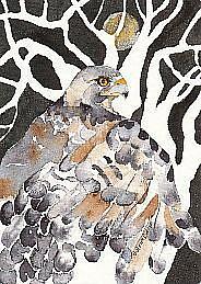Art: Night Hawk by Artist Gretchen Del Rio