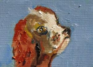 Detail Image for art Springer Spaniel Aceo
