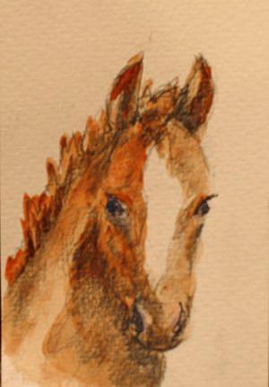 Art: Spring Foal by Artist Delilah Smith