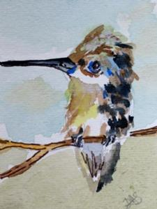 Detail Image for art Hummingbird aceo