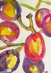 Detail Image for art Grapes Aceo