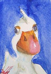 Art: Duck Aceo by Artist Delilah Smith