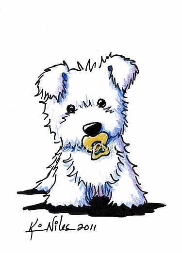 Картинки - Страница 2 Baby-Westie-Dog
