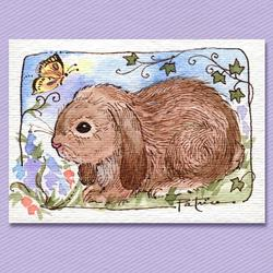 Art: Lop Ear Bunny & Butterfly Original ACEO Art by Artist Patricia  Lee Christensen