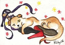 Art: Kitten hugging Shoes by Artist Marcia Ruby