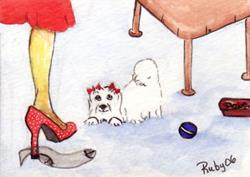 Art: Maltese Wants to Play by Artist Marcia Ruby