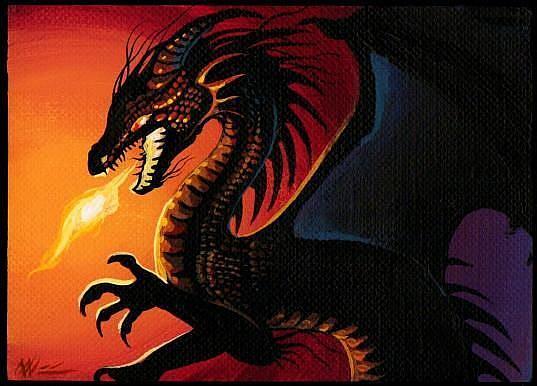 Art: Dragon Fire-aceo by Artist Nico Niemi