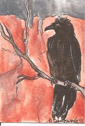 Art: Raven in the Grand Canyon SOLD by Artist Nancy Denommee