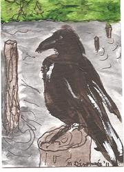 Art: Raven on the River by Artist Nancy Denommee