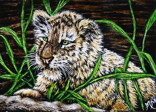 Art: Baby Tiger  (SOLD) by Artist Monique Morin Matson