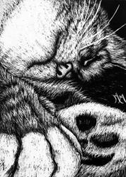 Art: Let Sleeping Cats Lie (SOLD) by Artist Monique Morin Matson