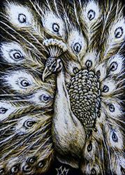 Art: White Peacock by Artist Monique Morin Matson