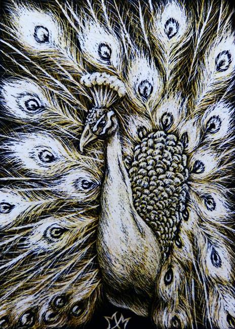 Art: White Peacock  (SOLD) by Artist Monique Morin Matson