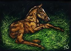 Art: Liver Chestnut Foal  (SOLD) by Artist Monique Morin Matson