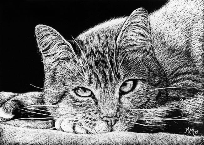Art: Kitty  (SOLD) by Artist Monique Morin Matson