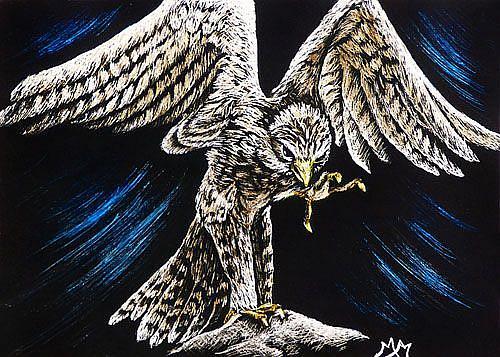 Art: Kestrel  (SOLD) by Artist Monique Morin Matson