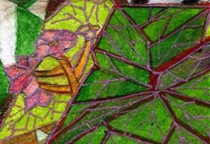 Detail Image for art Rex Begonia