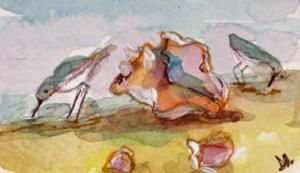 Detail Image for art Conch and Sanderlings