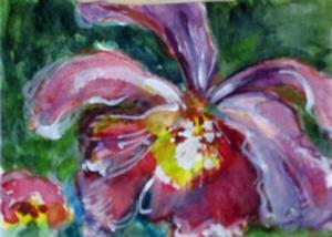 Detail Image for art Orchid