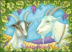 Art: NAPA VALLEY GOATS by Artist Susan Brack