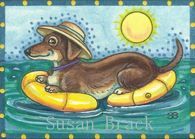 Art: DOXIE AFLOAT by Artist Susan Brack