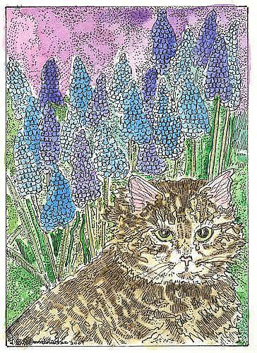 Art: MAINE COON KITTY AND MUSCARI by Artist Theodora Demetriades