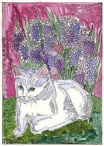 Art: LITTLE WHITE KITTY & GRAPE HYACINTH OR MUSCARI by Artist Theodora Demetriades