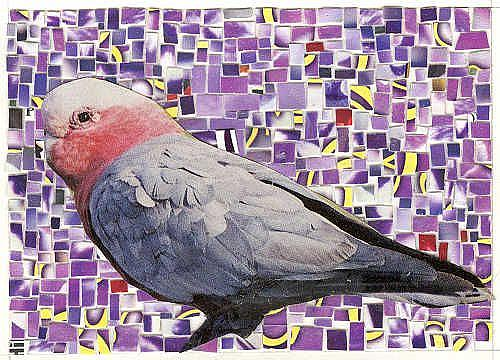 Art: Galah of Australia Mosaic by Artist Theodora Demetriades