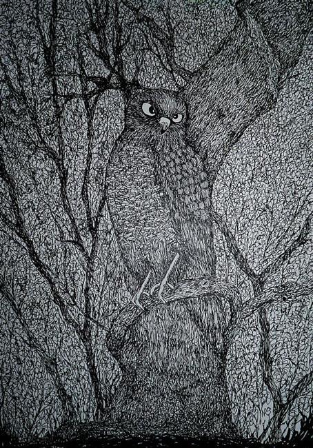 Art: Sharp Shinned Hawk by Artist Nata ArtistaDonna