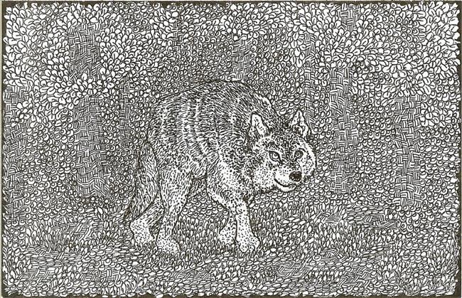 Art: Wolf by Artist Nata Romeo ArtistaDonna