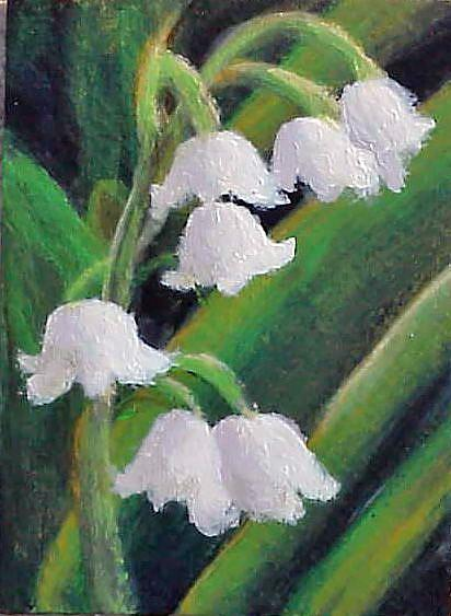Art: Lily of the Valley ACEO SOLD by Artist Terri L West