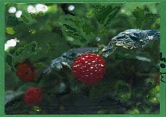 Art: RED BERRIES #4 by Artist Gabriele Maurus