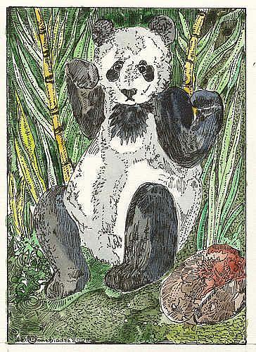 Art: 'VISITING THE PANDAS IN CHINA by Artist Theodora Demetriades